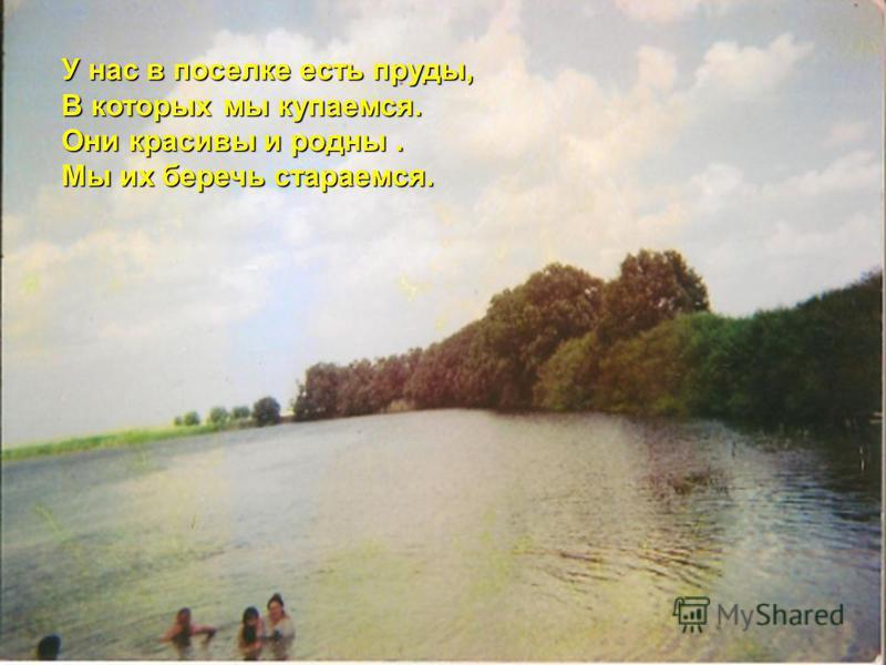 У нас в поселке есть пруды, В которых мы купаемся. Они красивы и родны. Мы их беречь стараемся.