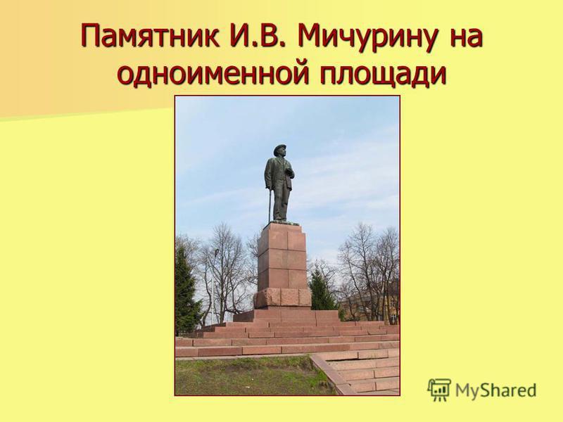 Памятник И.В. Мичурину на одноименной площади