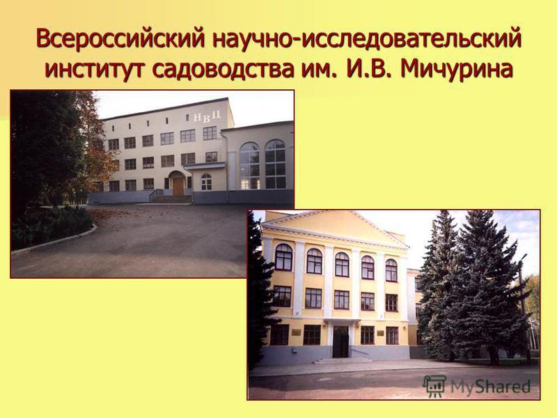 Всероссийский научно-исследовательский институт садоводства им. И.В. Мичурина