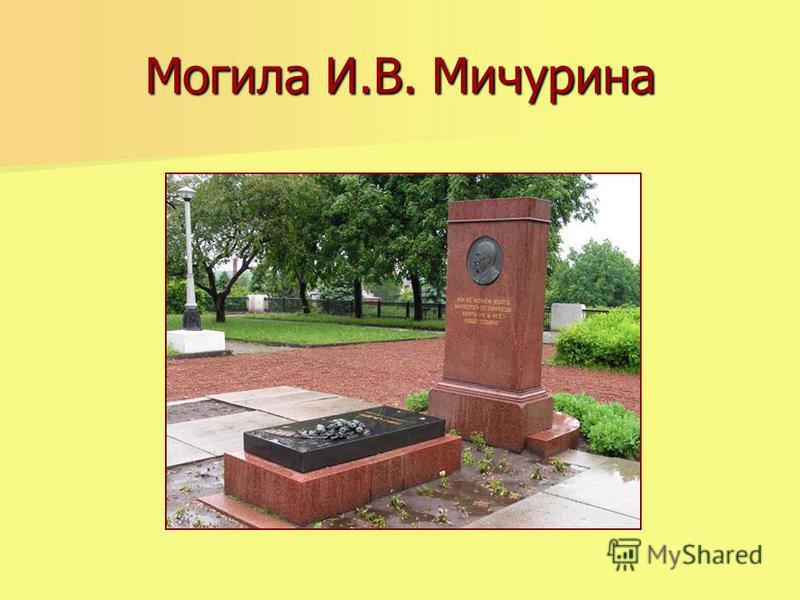 Могила И.В. Мичурина