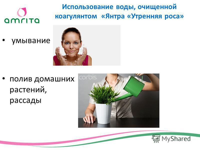 умывание полив домашних растений, рассады Использование воды, очищенной коагулянтом «Янтра «Утренняя роса»