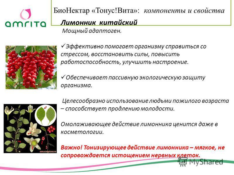 Био Нектар «Тонус!Вита»: компоненты и свойства Лимонник китайский Мощный адаптоген. Эффективно помогает организму справиться со стрессом, восстановить силы, повысить работоспособность, улучшить настроение. Обеспечивает пассивную экологическую защиту