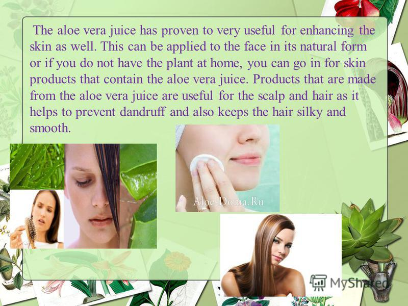The aloe vera juice has proven to very useful for enhancing the skin as well. This can be applied to the face in its natural form or if you do not have the plant at home, you can go in for skin products that contain the aloe vera juice. Products that
