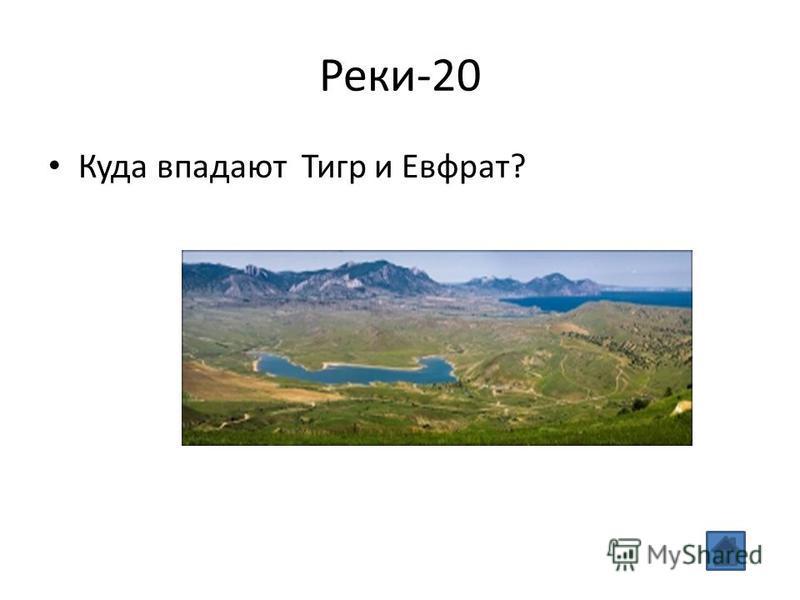 Реки-20 Куда впадают Тигр и Евфрат?
