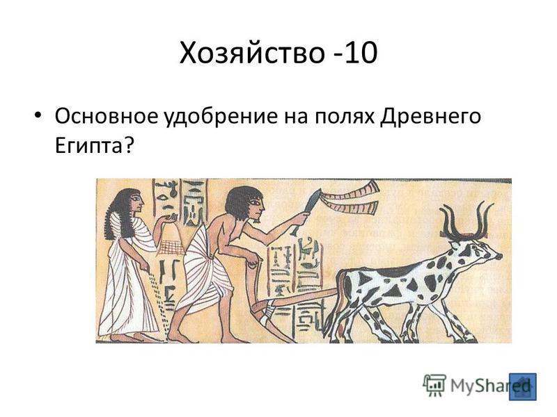Хозяйство -10 Основное удобрение на полях Древнего Египта?
