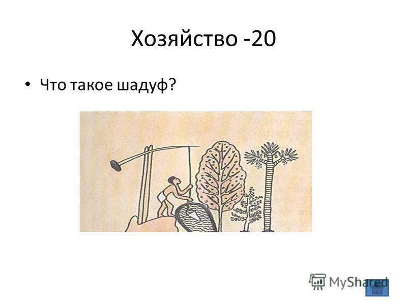 Хозяйство -20 Что такое шадуф?