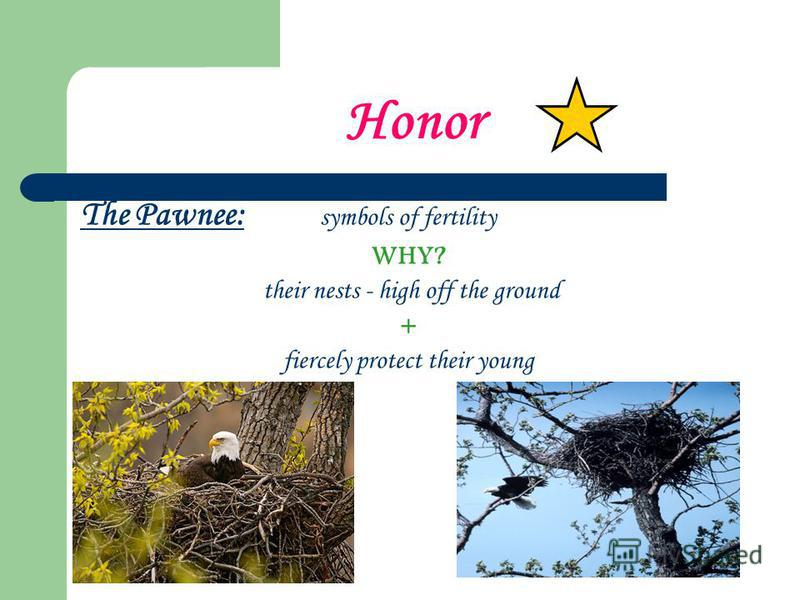 Honor The Pawnee: symbols of fertility WHY? their nests - high off the ground + fiercely protect their young