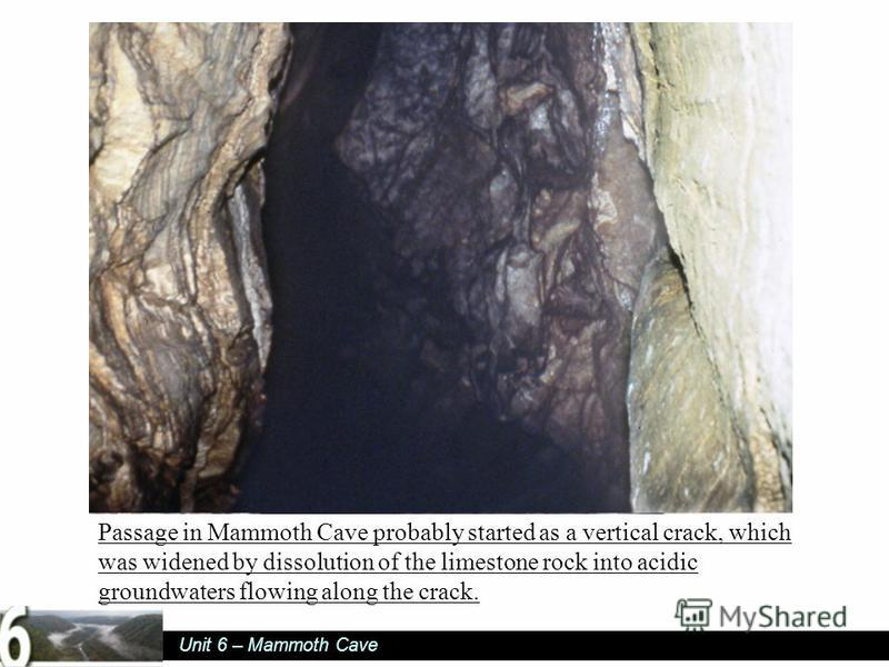 Unit 6 – Mammoth Cave Passage in Mammoth Cave probably started as a vertical crack, which was widened by dissolution of the limestone rock into acidic groundwaters flowing along the crack.