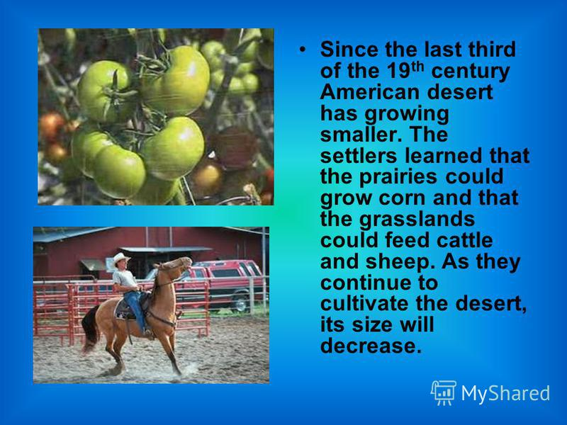 Since the last third of the 19 th century American desert has growing smaller. The settlers learned that the prairies could grow corn and that the grasslands could feed cattle and sheep. As they continue to cultivate the desert, its size will decreas