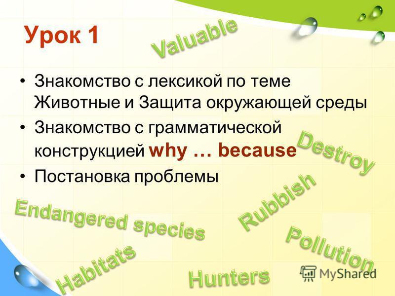 Урок 1 Знакомство с лексикой по теме Животные и Защита окружающей среды Знакомство с грамматической конструкцией why … because Постановка проблемы