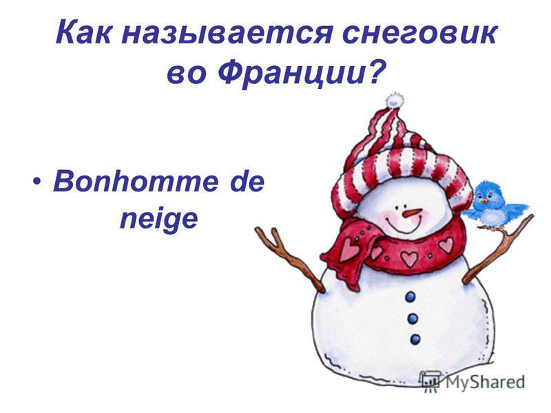 Как называется снеговик во Франции? Bonhomme de neige