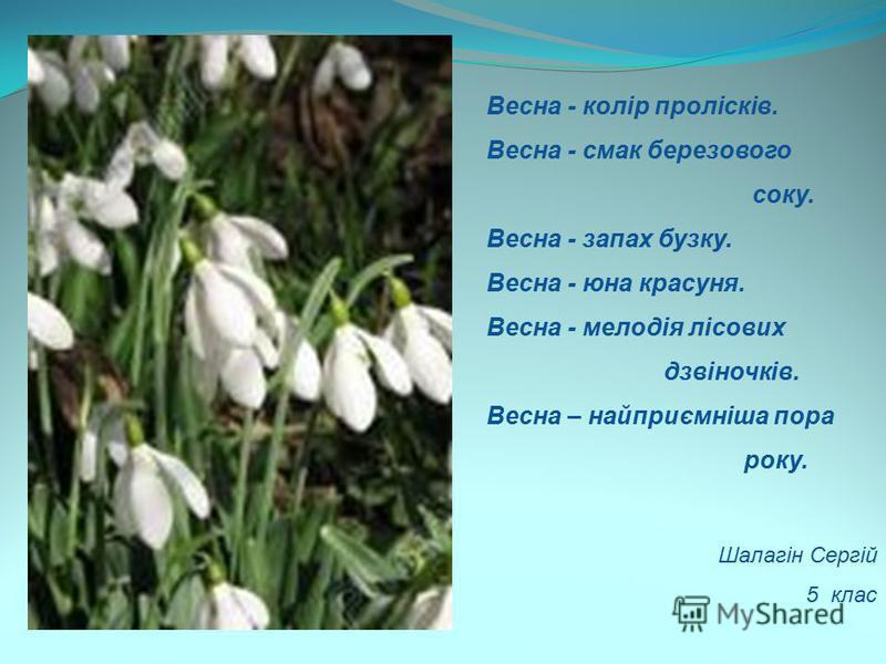 Весна - колір пролісків. Весна - смак березового соку. Весна - запах бузку. Весна - юна красуня. Весна - мелодія лісових дзвіночків. Весна – найприємніша пора року. Шалагін Сергій 5 клас