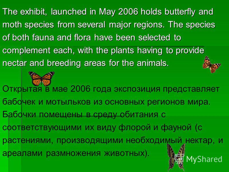 The exhibit, launched in May 2006 holds butterfly and moth species from several major regions. The species of both fauna and flora have been selected to complement each, with the plants having to provide nectar and breeding areas for the animals. Отк