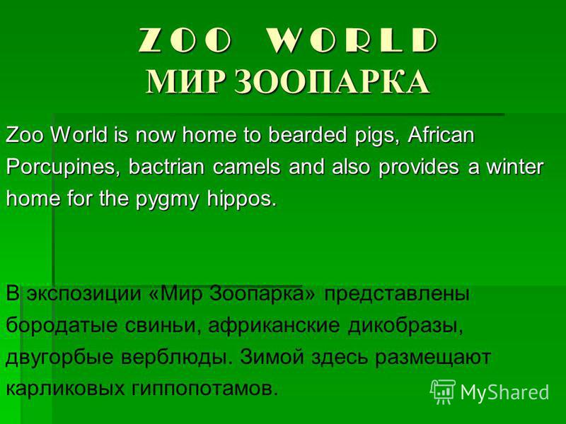 Z O O W O R L D МИР ЗООПАРКА Zoo World is now home to bearded pigs, African Porcupines, bactrian camels and also provides a winter home for the pygmy hippos. В экспозиции «Мир Зоопарка» представлены бородатые свиньи, африканские дикобразы, двугорбые