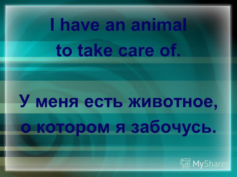 I have an animal to take care of. У меня есть животное, о котором я забочусь.