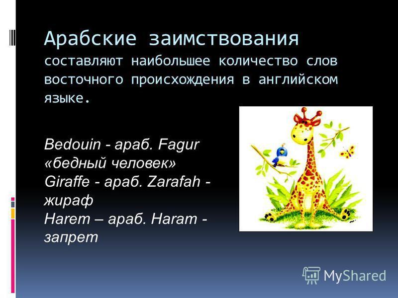 Арабские заимствования составляют наибольшее количество слов восточного происхождения в английском языке. Bedouin - араб. Fagur «бедный человек» Giraffe - араб. Zarafah - жираф Harem – араб. Haram - запрет