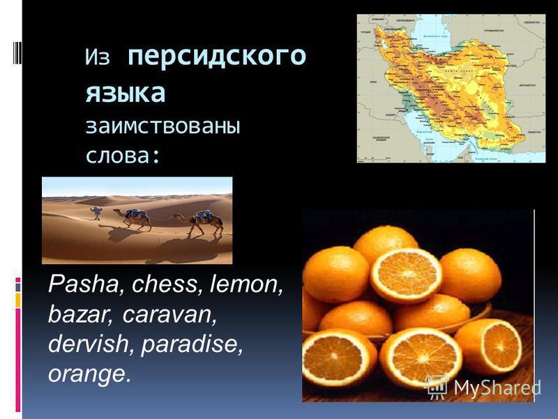 Из персидского языка заимствованы слова: Pasha, chess, lemon, bazar, caravan, dervish, paradise, orange.