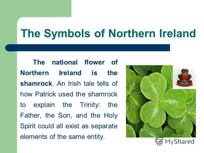 The Symbols of Northern Ireland The national flower of Northern Ireland is the shamrock. An Irish tale tells of how Patrick used the shamrock to explain the Trinity: the Father, the Son, and the Holy Spirit could all exist as separate elements of the