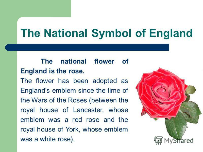 The National Symbol of England The national flower of England is the rose. The flower has been adopted as Englands emblem since the time of the Wars of the Roses (between the royal house of Lancaster, whose emblem was a red rose and the royal house o