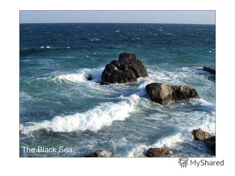 The Black Sea