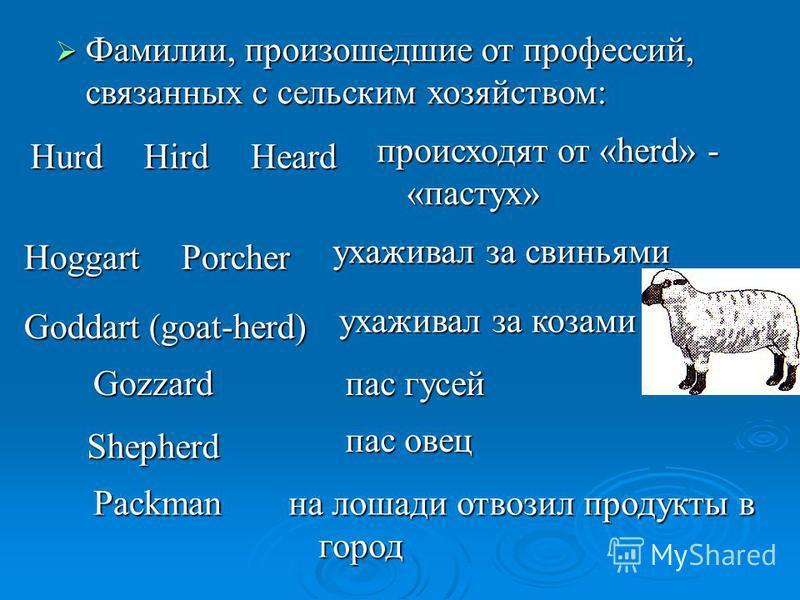 Фамилии, произошедшие от профессий, связанных с сельским хозяйством: Фамилии, произошедшие от профессий, связанных с сельским хозяйством: HurdHirdHeard происходят от «herd» - «пастух» HoggartPorcher ухаживал за свиньями Goddart (goat-herd) ухаживал з