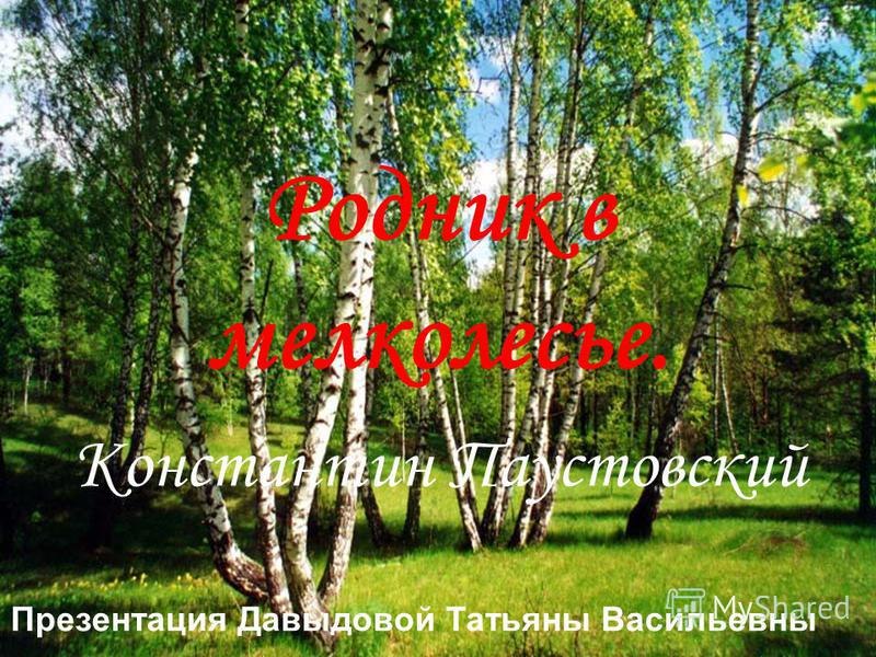 Родник в мелколесье. Константин Паустовский Презентация Давыдовой Татьяны Васильевны
