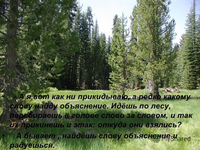 - А я вот как ни прикидываю, а редко какому слову найду объяснение. Идёшь по лесу, перебираешь в голове слово за словом, и так их прикинешь и этак: откуда они взялись? А бывает, найдёшь слову объяснение и радуешься.