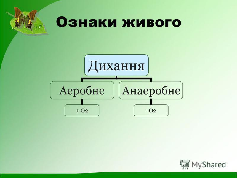 Ознаки живого Дихання Аеробне + О2 Анаеробне - О2