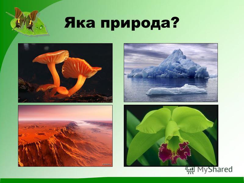 Яка природа?