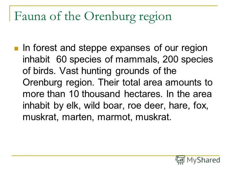 Fauna of the Orenburg region In forest and steppe expanses of our region inhabit 60 species of mammals, 200 species of birds. Vast hunting grounds of the Orenburg region. Their total area amounts to more than 10 thousand hectares. In the area inhabit