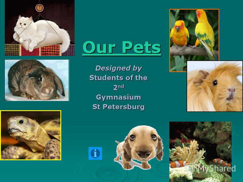 Our Pets Our Pets Designed by Students of the 2 nd Gymnasium St Petersburg