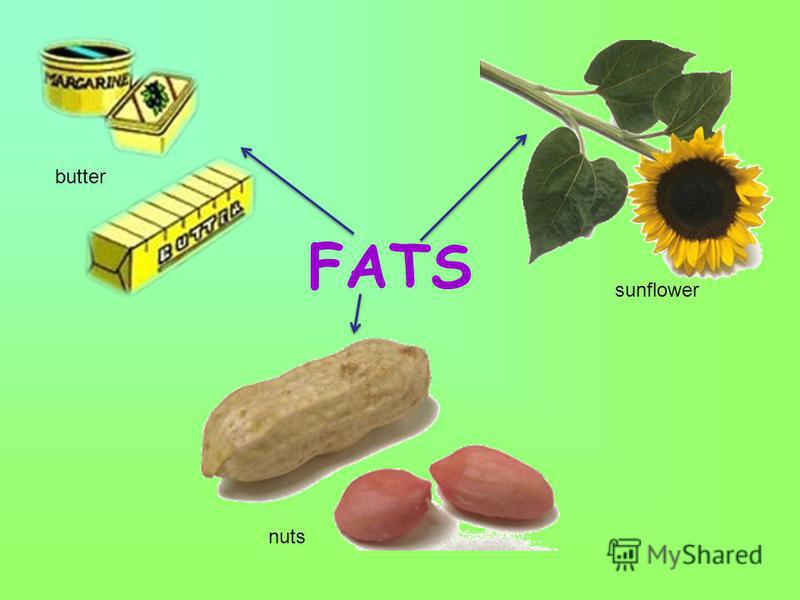 FATS butter nuts sunflower
