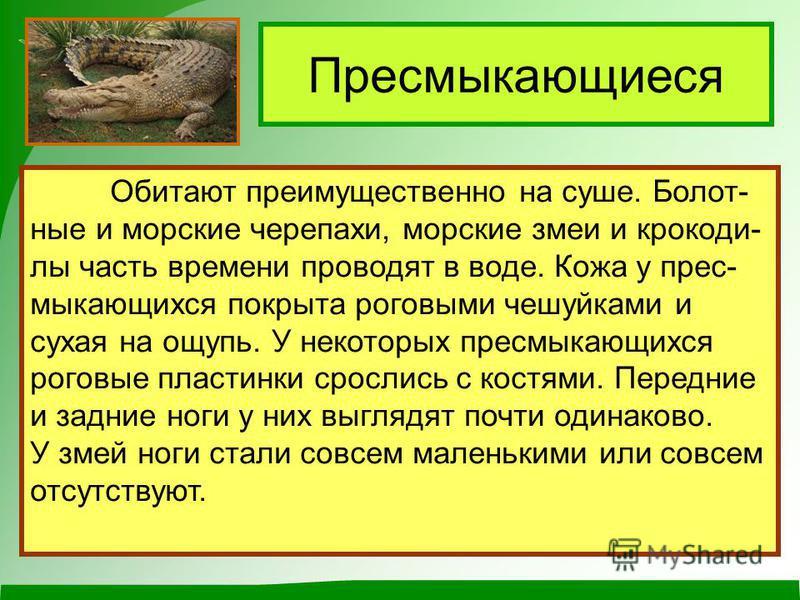 Обитают преимущественно на суше. Болот- ные и морские черепахи, морские змеи и крокодилы часть времени проводят в воде. Кожа у пресмыкающихся покрыта роговыми чешуйками и сухая на ощупь. У некоторых пресмыкающихся роговые пластинки срослись с костями