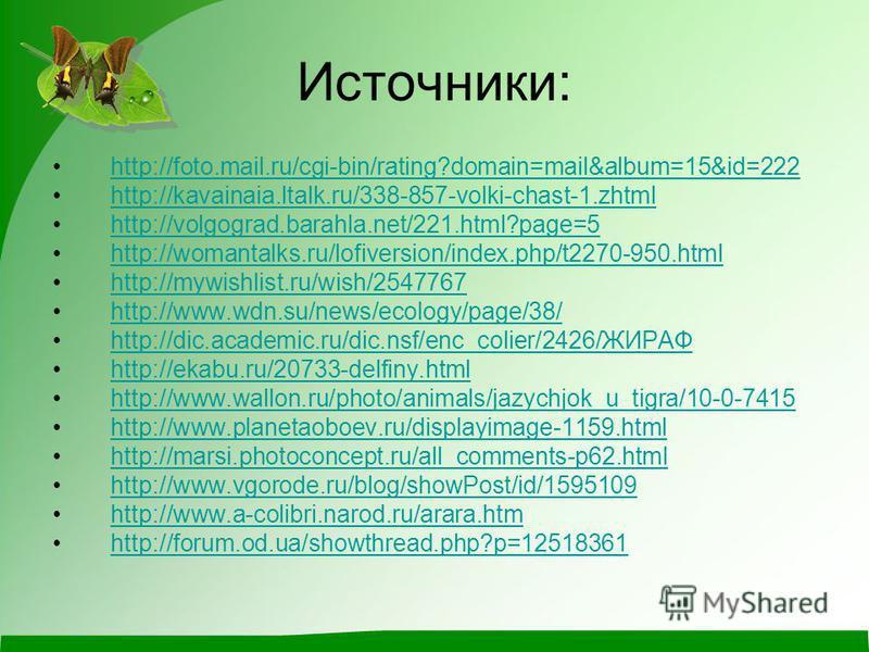 Источники: http://foto.mail.ru/cgi-bin/rating?domain=mail&album=15&id=222 http://kavainaia.ltalk.ru/338-857-volki-chast-1. zhtml http://volgograd.barahla.net/221.html?page=5 http://womantalks.ru/lofiversion/index.php/t2270-950. html http://mywishlist