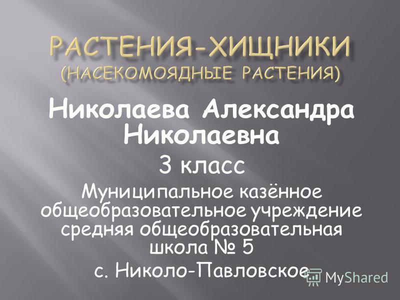 Николаева Александра Николаевна 3 класс Муниципальное казённое общеобразовательное учреждение средняя общеобразовательная школа 5 с. Николо-Павловское