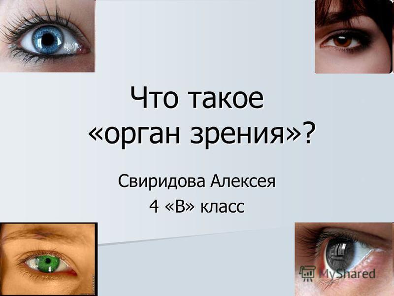 Что такое «орган зрения»? Свиридова Алексея 4 «В» класс