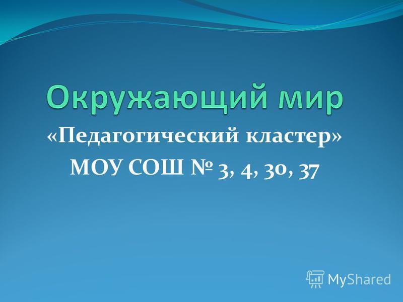 «Педагогический кластер» МОУ СОШ 3, 4, 30, 37