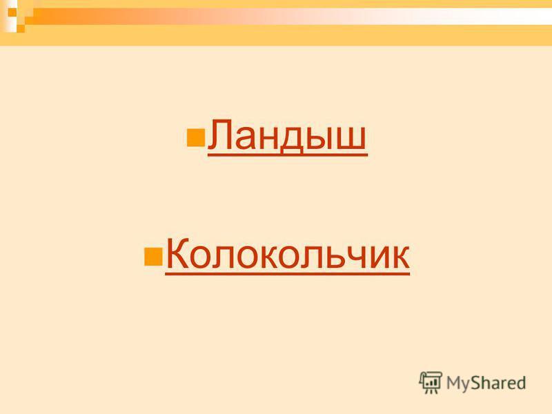 Ландыш Колокольчик