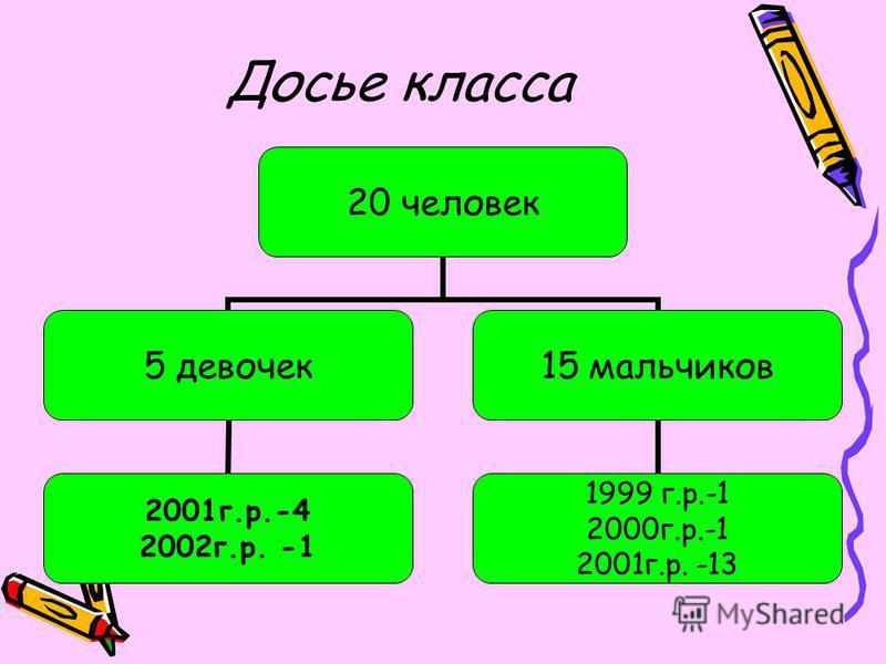 Досье класса 20 человек 5 девочек 2001 г.р.-4 2002 г.р. -1 15 мальчиков 1999 г.р.-1 2000 г.р.-1 2001 г.р. -13