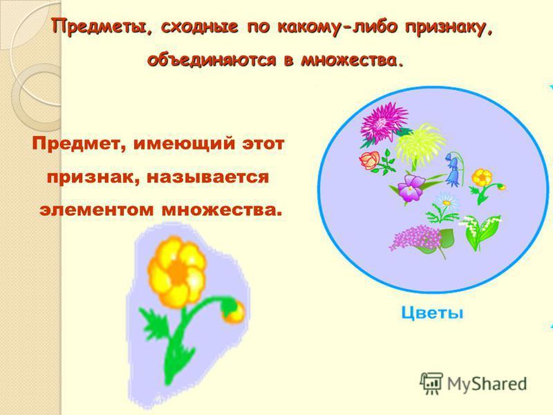 Предметы, сходные по какому-либо признаку, объединяются в множества. объединяются в множества. Предмет, имеющий этот признак, называется элементом множества.