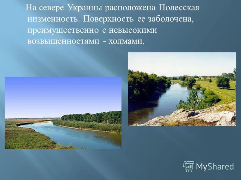 На севере Украины расположена Полесская низменность. Поверхность ее заболочена, преимущественно с невысокими возвышенностями - холмами.