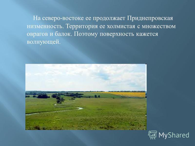 На северо - востоке ее продолжает Приднепровская низменность. Территория ее холмистая с множеством оврагов и балок. Поэтому поверхность кажется волнующей.