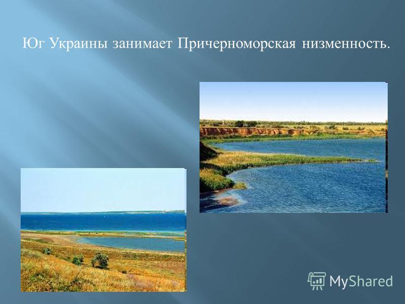 Юг Украины занимает Причерноморская низменность.