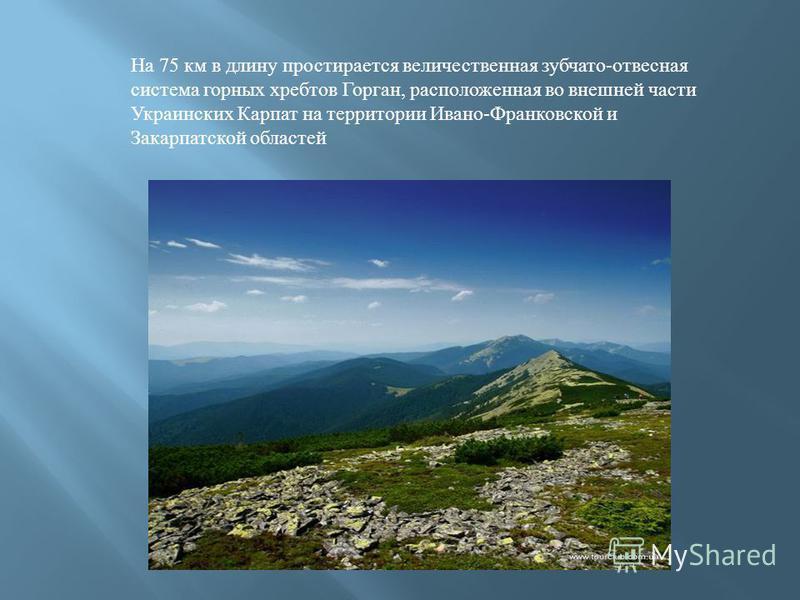 На 75 км в длину простирается величественная зубчато-отвесная система горных хребтов Горган, расположенная во внешней части Украинских Карпат на территории Ивано-Франковской и Закарпатской областей