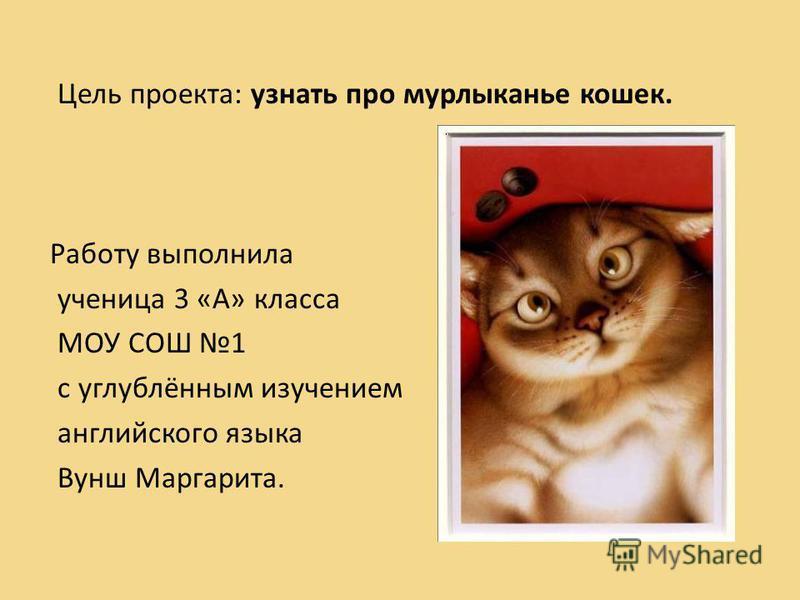 Цель проекта: узнать про мурлыканье кошек. Работу выполнила ученица 3 «А» класса МОУ СОШ 1 с углублённым изучением английского языка Вунш Маргарита.