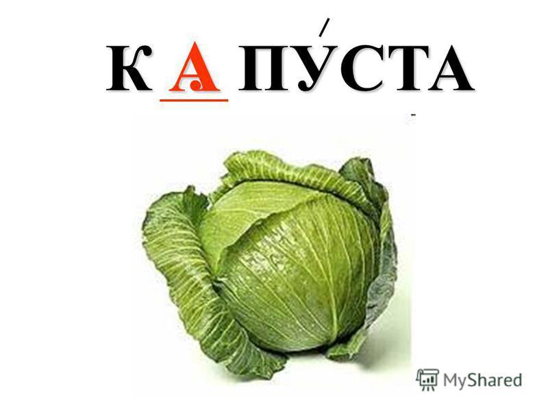 К. ПУСТА А