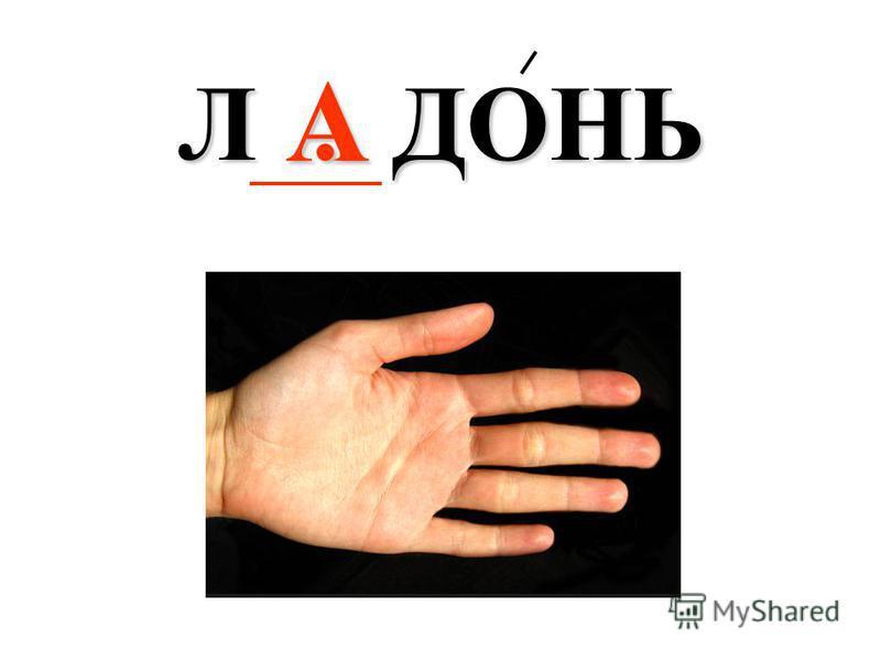 А Л. ДОНЬ