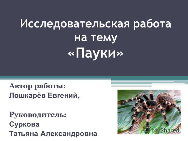 Исследовательская работа на тему «Пауки» Автор работы: Лошкарёв Евгений, Руководитель: Суркова Татьяна Александровна