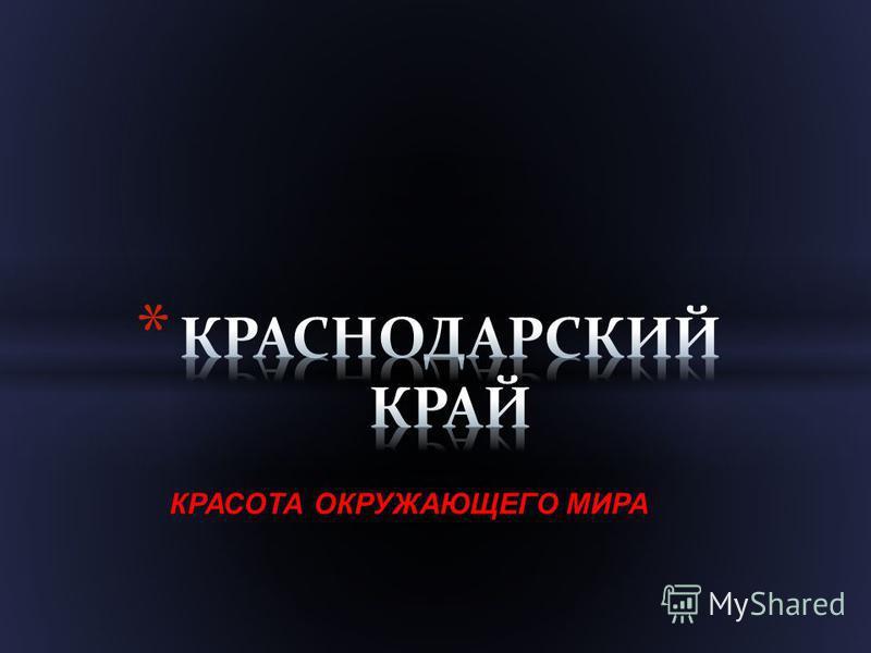 КРАСОТА ОКРУЖАЮЩЕГО МИРА