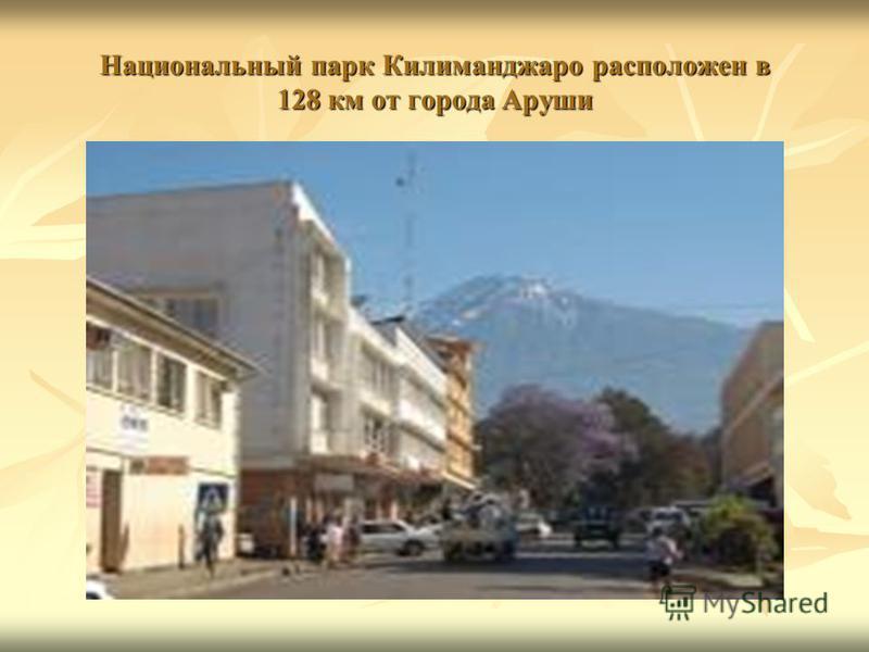 Национальный парк Килиманджаро расположен в 128 км от города Аруши
